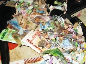 paper currency is vulnerable to being destroyed by fire, rats, water, wind, etc.